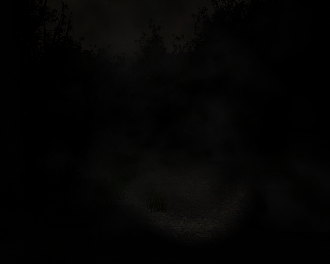 Slender: The Eight Pages Windows As you collect more pages the fog severely reduces the visibility