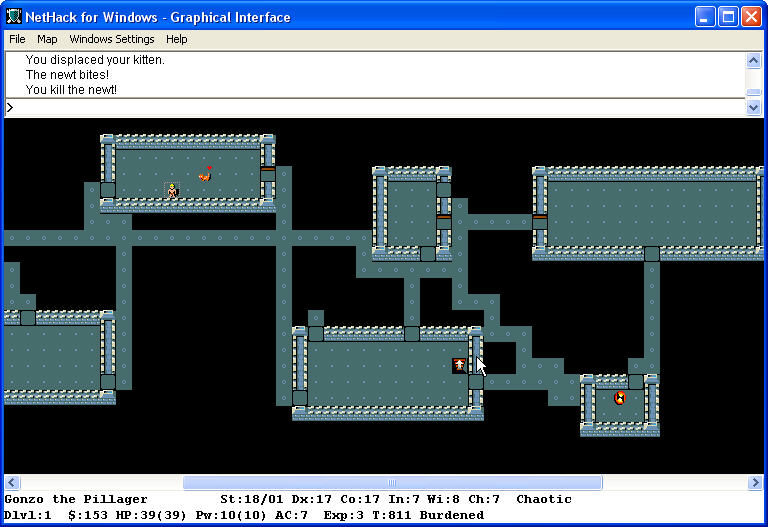NetHack Windows Kill the newt.
