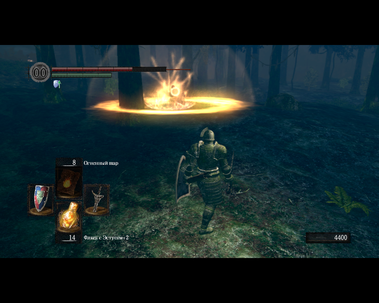 Dark Souls: Prepare to Die Edition Windows Encountered a sorcerer in Darkroot Garden