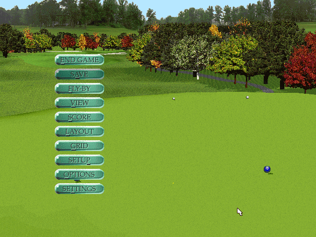 PGA Tour 96 DOS In game options