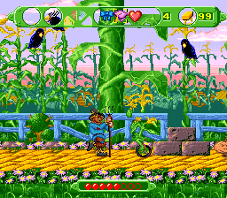 The Wizard of Oz SNES Scarecrow on farm