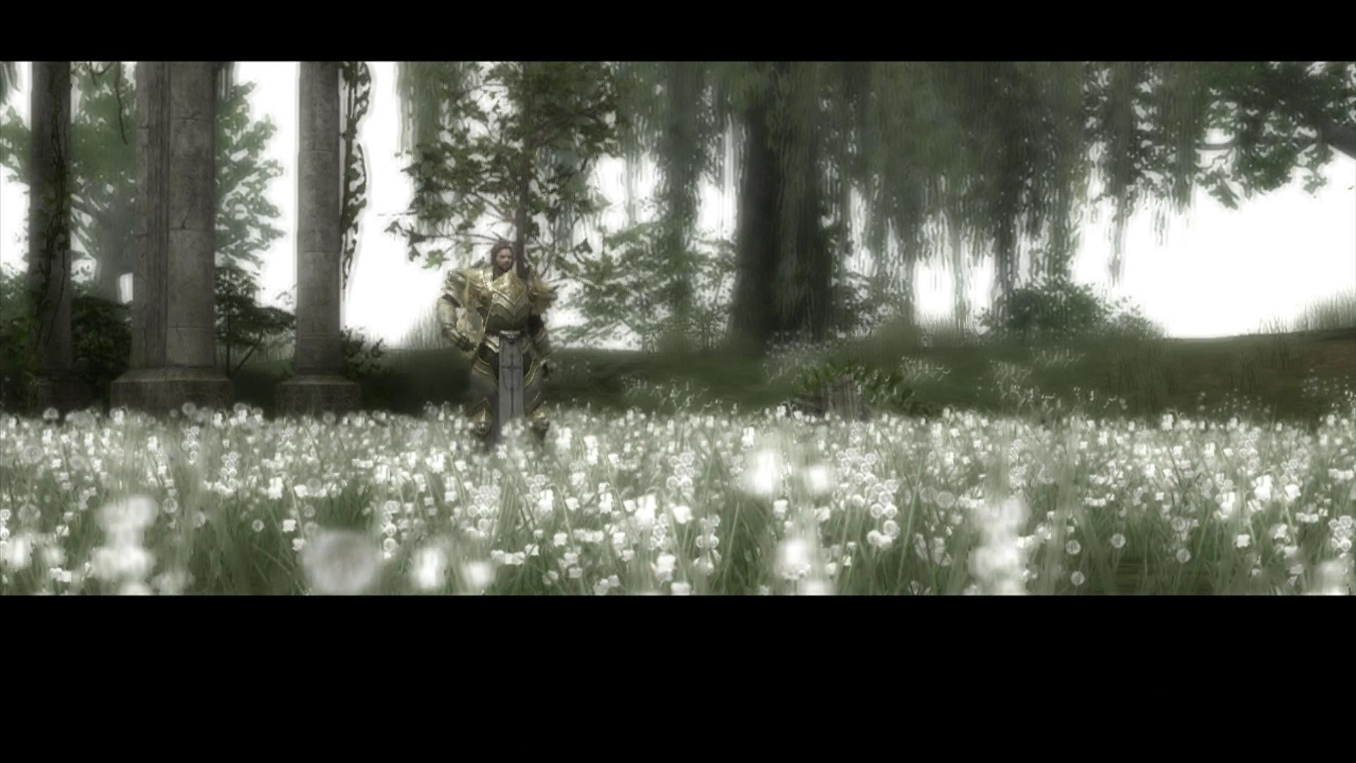 Kingdom Under Fire: Circle of Doom Xbox 360 Kendal starts in a peacefull meadow.