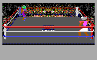 4-D Boxing DOS Gameplay (EGA)