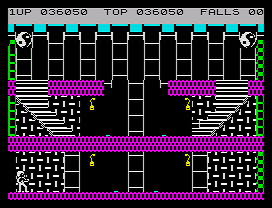 Bruce Lee ZX Spectrum Save chamber level