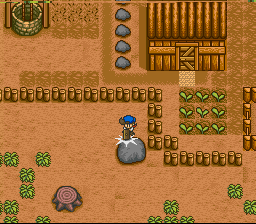 Harvest Moon SNES That boulder seems to be in the way of future development, time to remove it into oblivion!
