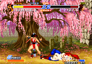 Real Bout Fatal Fury 2: The Newcomers Arcade Knocked down.