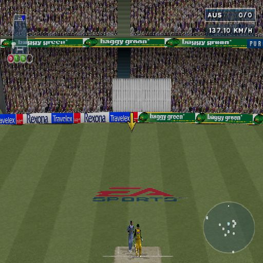 Cricket 2004 PlayStation 2 The yellow arrow is an optional aid, it shows where the ball is.