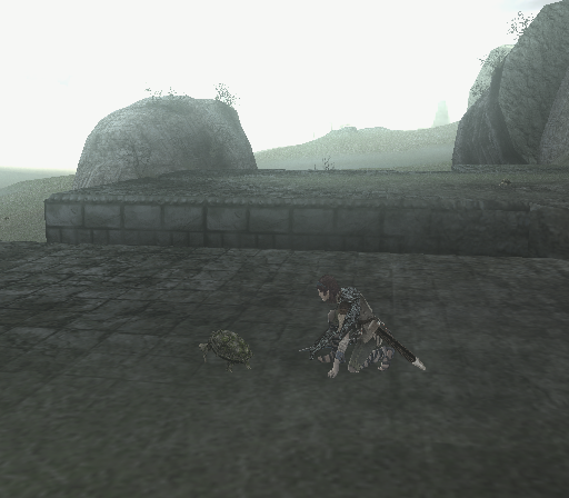 Shadow of the Colossus PlayStation 2 You kneel near a turtle and attempt to have some sort of meaningful contact