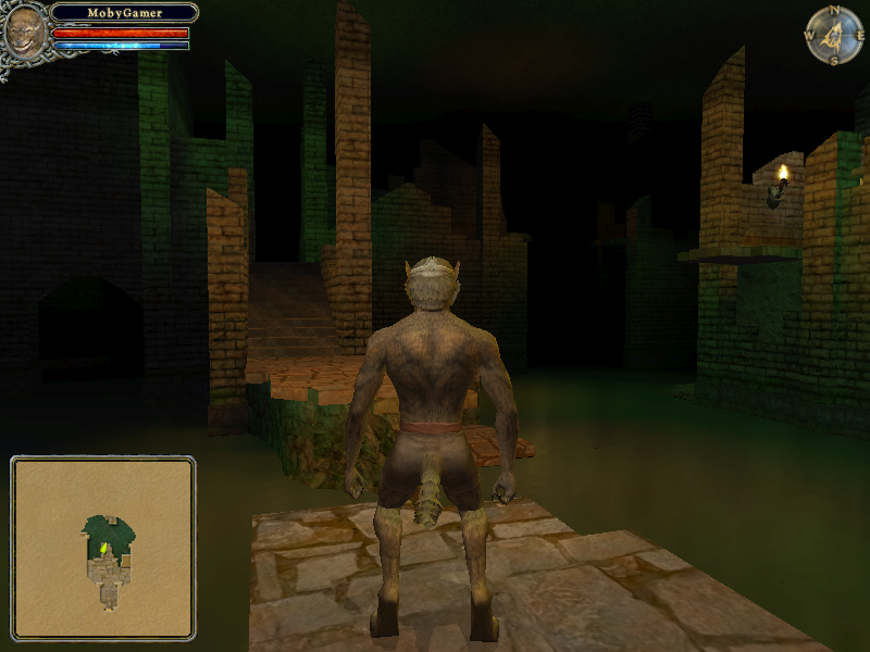 Dungeon Lords Windows Look, I just wanted to swim naked. I like the water, ya know. I'm weird that way