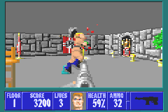 Wolfenstein 3D Game Boy Advance Either kill or get killed.