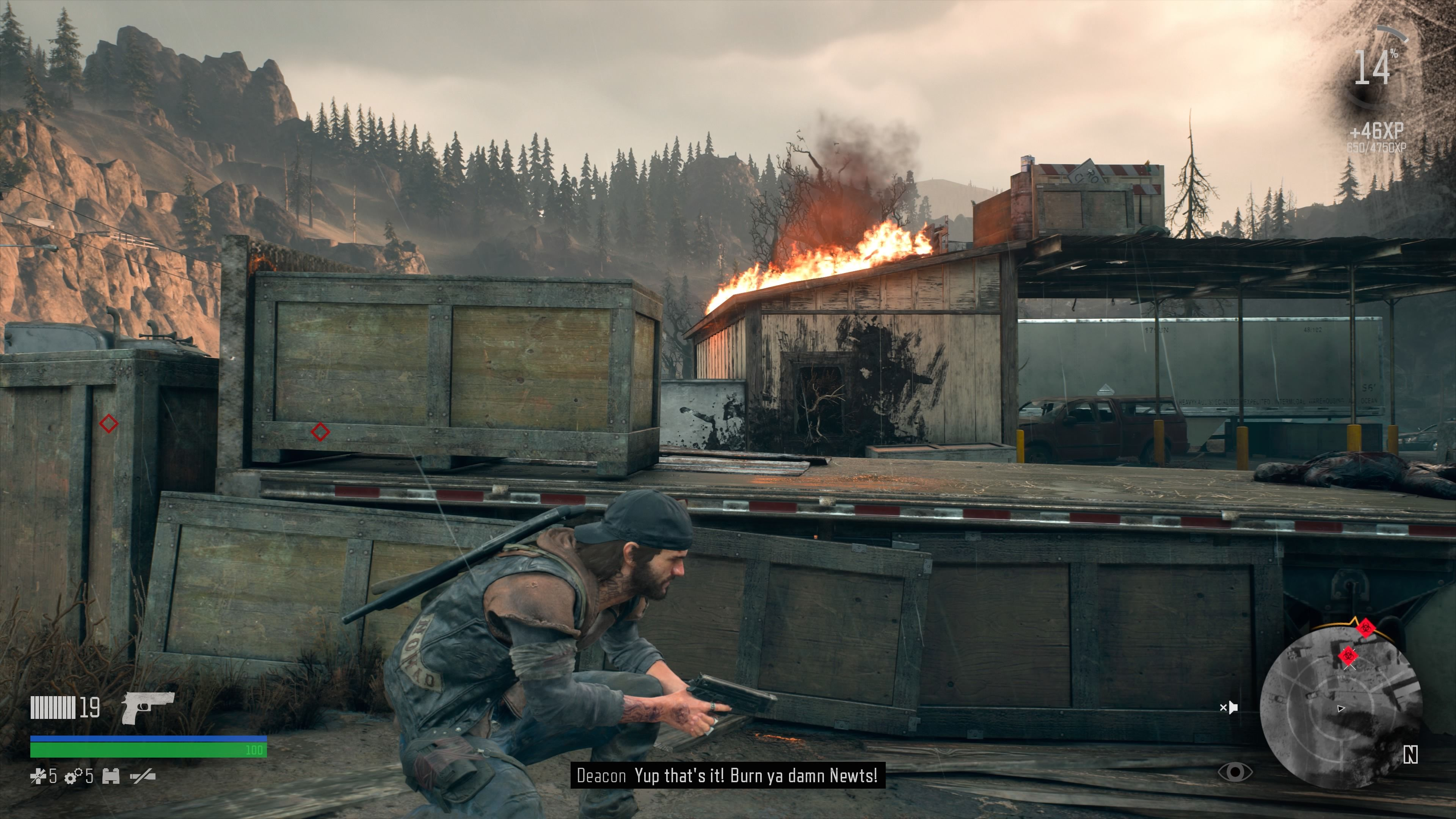 Days Gone PlayStation 4 Using molotov cocktail to scorch a couple of newts