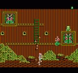 King Neptune's Adventure NES The gold is guarded by a skeleton.