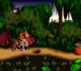 Donkey Kong Country SNES Metal Donkey Kong! This is a funny bug of the game!