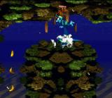 Donkey Kong Country SNES Blue Diddy! This is a other funny bug of the game!