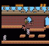 Operation Secret Storm NES Fighting skeletons and lunatics in a castle.