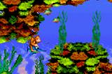 Donkey Kong Country Game Boy Advance With the help of Enguarde in water levels, the adventure betters more!