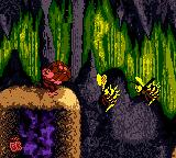 Donkey Kong Country Game Boy Color One barrel for two Zingers: which of them Diddy must kill?
