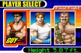 Final Fight Game Boy Advance These 3 fighters already had made the joy of many generations...