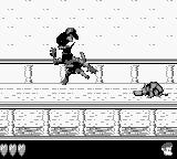 Donkey Kong Land 2 Game Boy Jumping in some enemies like this fool Kremlin is always funny!