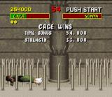 Mortal Kombat SNES You've launched your opponent in the pit bottom. But the SNES version possess a weak point: NO BLOOD!