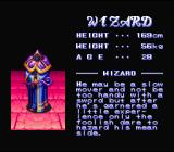 The King of Dragons SNES Character description screen