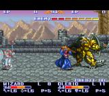 The King of Dragons SNES The wizard and the cleric taking on a dragon.