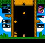 "Wario's Woods NES In ""Round Game"", Wario will occasionally pop up to increase the game's speed and lower the ceiling."