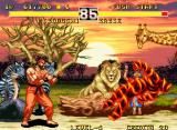 Fighter's History Dynamite Neo Geo Fighter of Flames