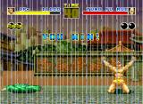 Fatal Fury Neo Geo Great! The enemy was defeated in full rain!