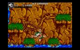 Joe & Mac: Caveman Ninja DOS Water is your enemy.