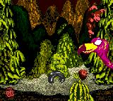 Donkey Kong Country Game Boy Color Jump in Master Necky's head some times to complete the 2nd world, Monkey Mines! And take care with some falling nuts...