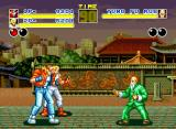 Fatal Fury Neo Geo Fighting with a friend: extra help always!