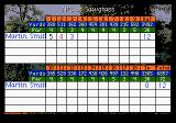 PGA Tour Golf III Genesis Level par after 3 holes