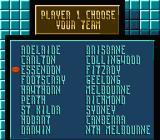 Aussie Rules Footy NES Choosing your team