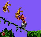 "Donkey Kong Country Game Boy Color Killing two fool Kremlings using a ""customized"" steel barrel attack."