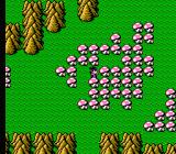 Bikkuriman World: Gekitō Sei Senshi NES hey, I have nothing against mushrooms... but not so many, and not such big ones!