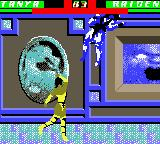 Mortal Kombat 4 Game Boy Color With a little help of Tanya's uppercut, Raiden goes to the heights.