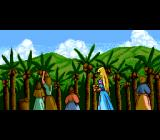 Cosmic Fantasy 2 TurboGrafx CD Village people gathering...