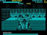 Final Fight ZX Spectrum The identical Andore twins double team you