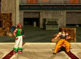"Fatal Fury 3: Road to the Final Victory Neo Geo Hon Fu and Bob Wilson get ready to ""bring it on."""