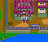 Tengai Makyō II: Manjimaru TurboGrafx CD Each province has a capital city with large, fancy houses