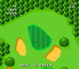Naxat Open TurboGrafx-16 View of the green