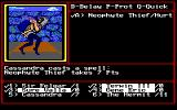 Might and Magic II: Gates to Another World DOS Eat hot magic death you cross-dressing thief!!