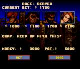 Lamborghini: American Challenge SNES Gambling is the fast mode to increase its money account.