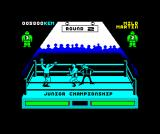 By Fair Means or Foul ZX Spectrum Won that round
