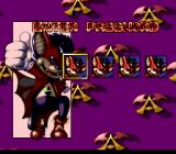 Aero the Acro-Bat 2 SNES Password screen