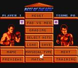 Best of the Best Championship Karate NES Main menu