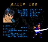 Double Dragon V: The Shadow Falls SNES Character information