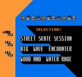Town & Country Surf Designs: Wood & Water Rage NES Select a game
