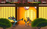 Brutal: Paws of Fury DOS The dojo